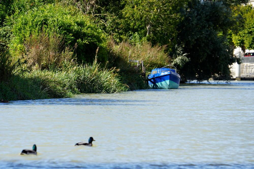 promenade famille bateau savinien
